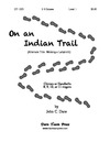 On An Indian Trail